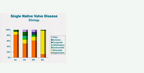 Il faut actualiser les critères diagnostiques des valvulopathies ...