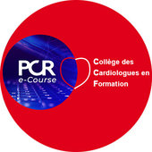 CCF @ PCR e-Course 2020